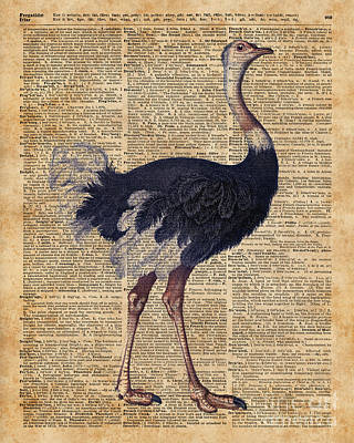 Tapestries - Textiles Mixed Media - Ostrich Big Bird Animal Vintage Dictionary Illustration by Jacob Kuch