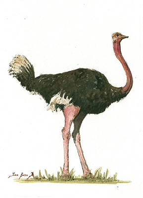 African Painting - Ostrich Bird by Juan Bosco