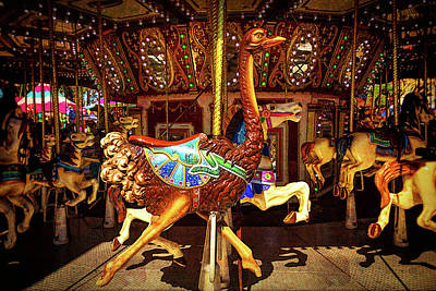 Ostrich Photograph - Ostrich Carousel Ride by Garry Gay
