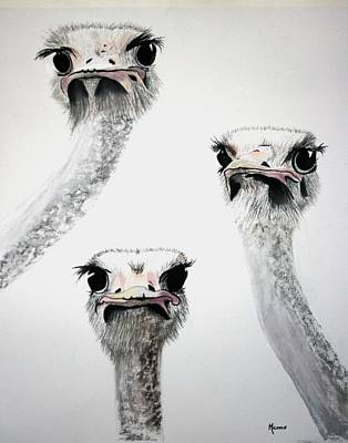 Pastel - Ostrich Curiosity by Michele Turney