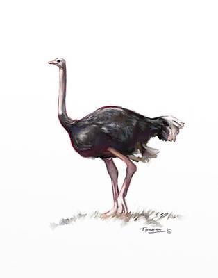 Emu Digital Art - Ostrich  by Ramona MacDonald