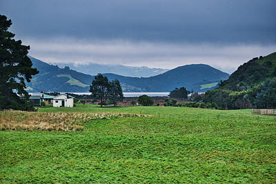 Photograph - Otago Peninsula I - New Zealand by Steven Ralser