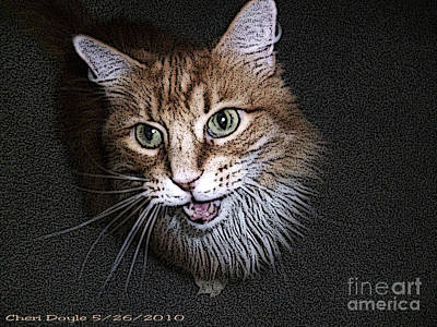 Digital Art - Otis The Orange Kitty by Cheri Doyle