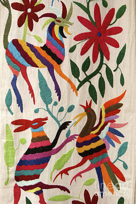 Photograph - Otomi Fantasy Mexico by John  Mitchell