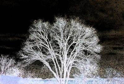 Digital Art - Ottawa Tree Silhouette by Ellen Barron O'Reilly