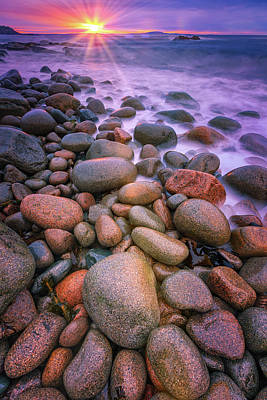 Photograph - Otter Beach Raze  by Emmanuel Panagiotakis