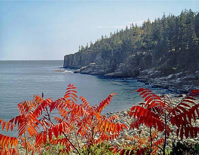 Photograph - 136211-otter Cliffs In Maine  by Ed  Cooper Photography