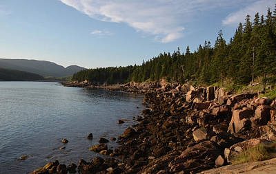 Photograph - Otter Cove by Janice Adomeit