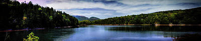 Photograph - Otter Cove Panorama by Roger Passman