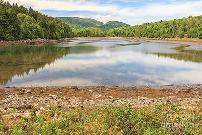 Photograph - Otter Creek Acadia National Park by Elizabeth Dow