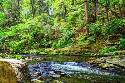 Photograph - Otter Creek by Dale R Carlson