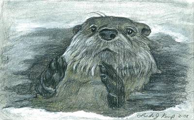 Otter Drawing - Otter In Ice by Linda Nielsen