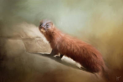 Painting - Mink On The Rocks by Jai Johnson