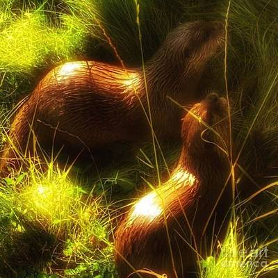 Wildlife Wall Art - Photograph - #otter #ottersofinstagram #animals by Isabella Shores