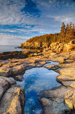 Photograph - Otter Point View Acadia Np 1 by John McArthur