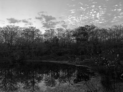 Photograph - Otter Pond by Juergen Roth