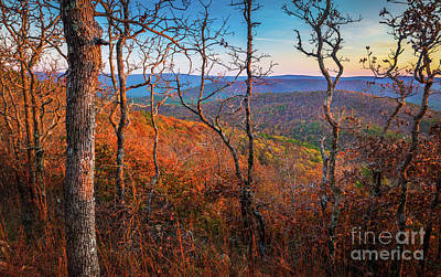Photograph - Ouachita Twilight by Inge Johnsson