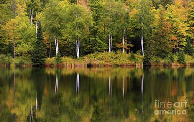 Photograph - Our Autumn Song by Rachel Cohen