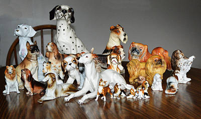 Photograph - Our Dogs by rd Erickson