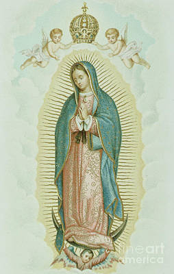 Pray Drawing - Our Lady Of Guadalupe by French School