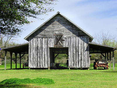Photograph - Out By The Barn by Laura Ragland