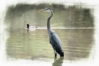 Blue Herron Digital Art - Out By The Pond by Melissa Davis
