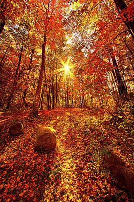 Unity Photograph - Out Here by Phil Koch