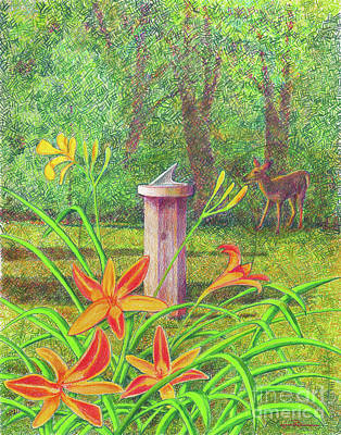 Color Pencil Drawing - Out My Back Door by Jim Rehlin
