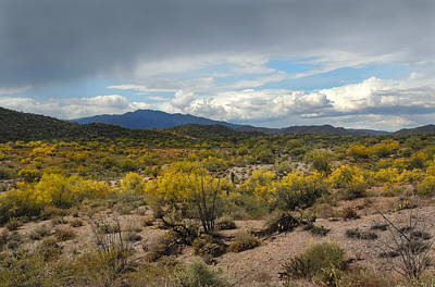 Apache Creek Photograph - Out My Way by Gordon Beck