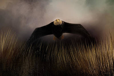 Photograph - Out Of The Grass by Jai Johnson