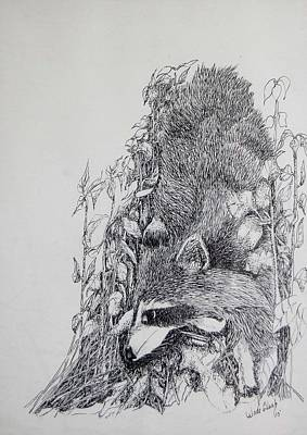 Drawing - Out Of The Woods by Wade Clark