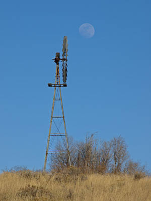Photograph - Out On The Prairie by DeeLon Merritt