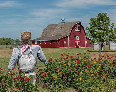 Photograph - Out Standing In The Field by Susan Rissi Tregoning