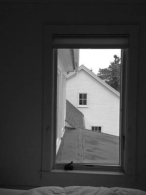 Photograph - Out The Stonington Guest Room Window by Polly Castor