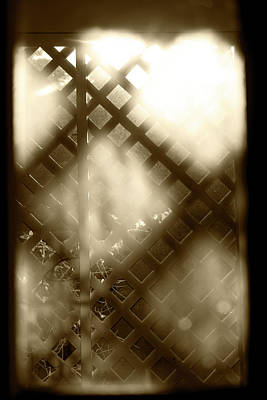 Photograph - Out The Window by Sharon Popek