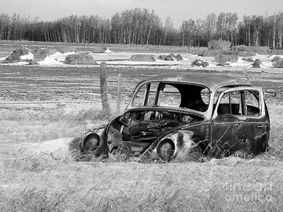 Bail Out Photograph - Out To Pasture 001 Bw Vw by Jor Cop Images