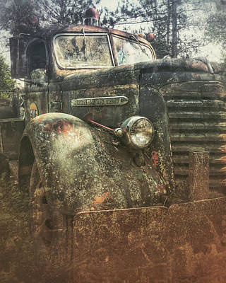 Photograph - Out To Pasture by Angela King-Jones