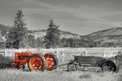 Photograph - Out To Pasture by Donna Kennedy