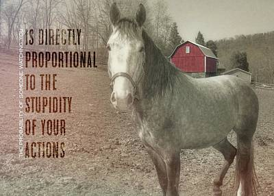 Out To Pasture Quote Art Print by JAMART Photography
