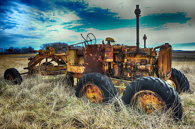 Photograph - Out To Pasture by Steve Archbold