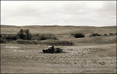 Photograph - Out To Pasture by Thomas Bomstad