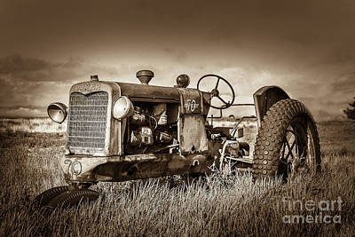 Photograph - Out To Rest by Steven Reed