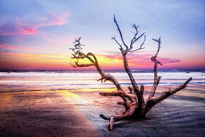 Photograph - Out With The Tides by Debra and Dave Vanderlaan