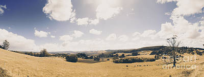 Photograph - Outback Ridgley In Scenic Tasmania, Australia by Jorgo Photography - Wall Art Gallery