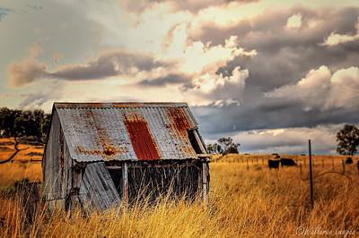 Photograph - Outback Shed by Wallaroo Images