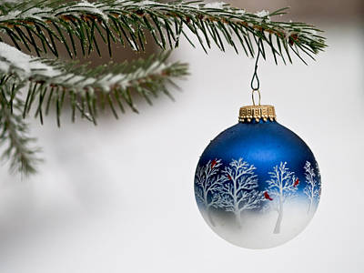 Photograph - Outdoors Christmas Ornament by Jim DeLillo
