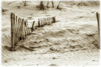 Outer Banks Beach Sand Fence  Art Print by Randy Steele