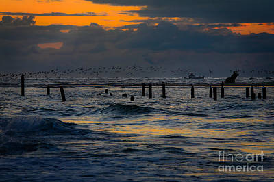 Photograph - Outer Banks Fishing Boats And Birds by Dan Carmichael