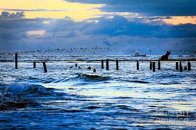 Photograph - Outer Banks Fishing Boats And Birds Fx by Dan Carmichael