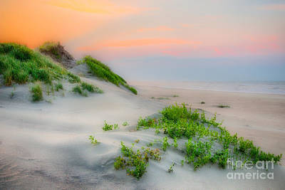 Photograph - Outer Banks Soft Dune Sunrise by Dan Carmichael